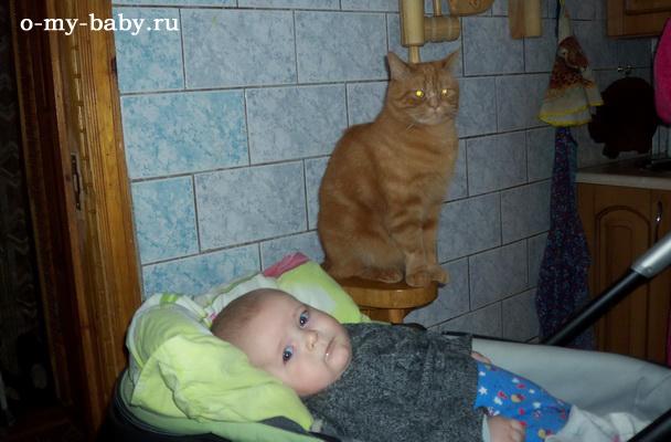 Можно лежать в люльки и смотреть на кота.