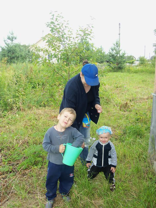 Вместе собираем малину в маленькое ведёрко.