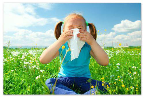 Приём антигистаминных препаратов поможет пережить сезонную аллергию.