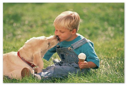 Дети и домашние животные.