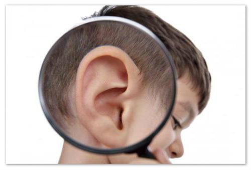 Отзывы об ушных каплях.
