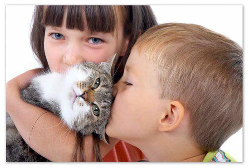 Дети и кот.
