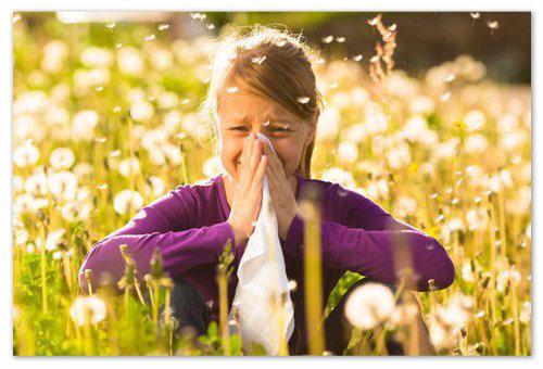 Реакция на пыльцу.